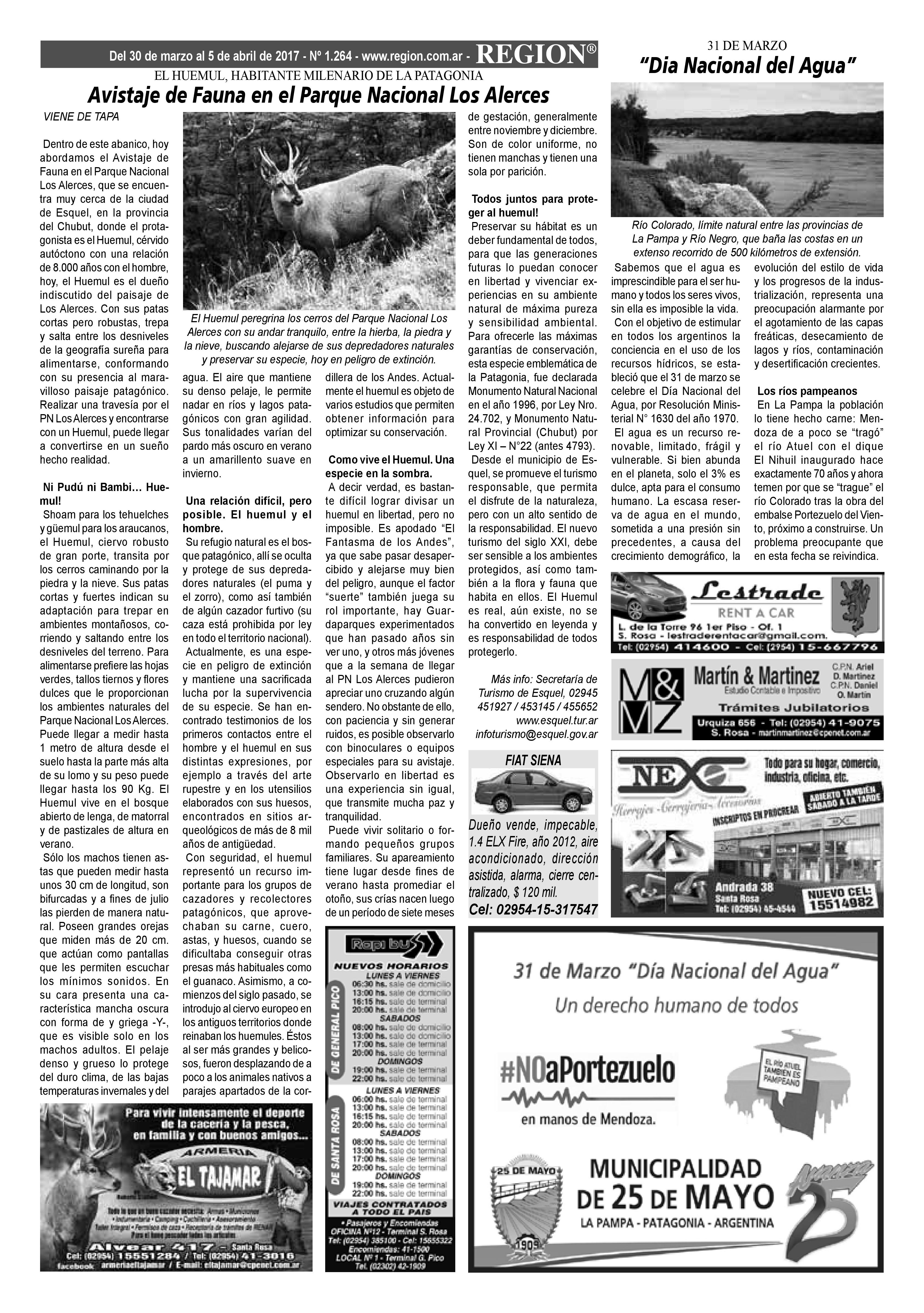 Semanario Region 02
